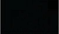 Hurricane Luftvapen Logotyp